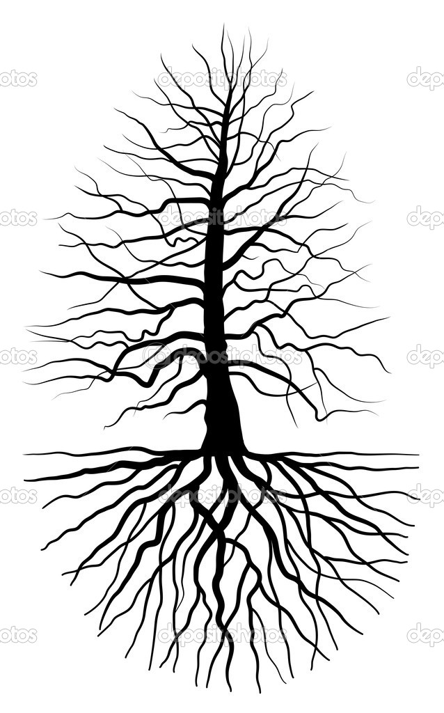 Oak Tree Silhouette With Roots