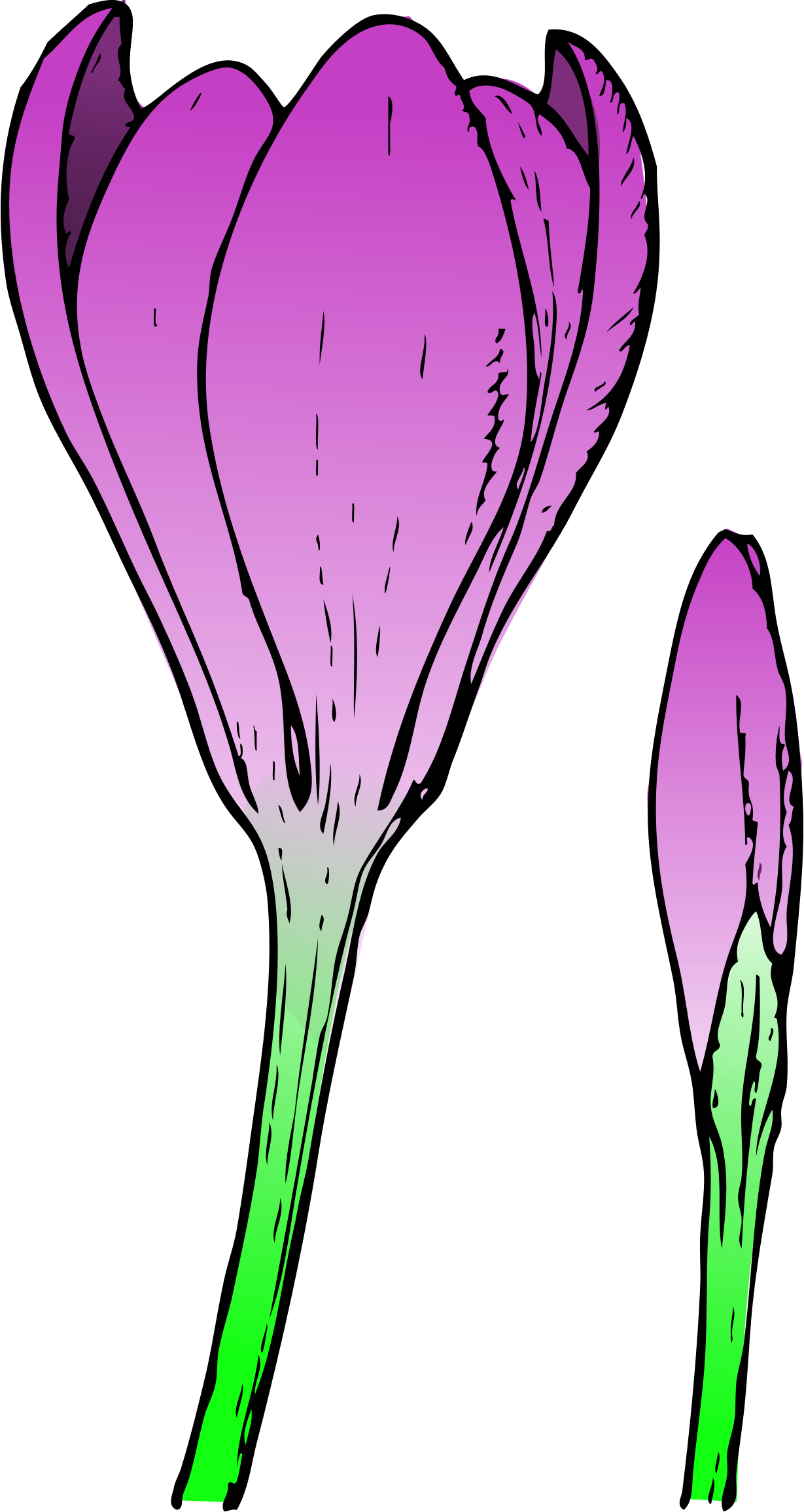 Clip Art Spring Flowers - Cliparts.co