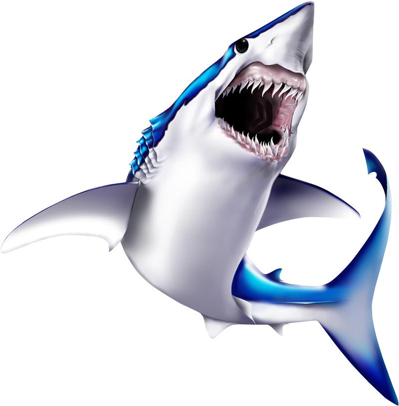 free animated shark clipart - photo #47