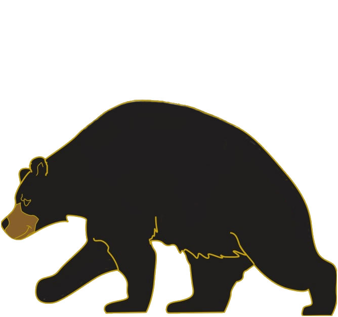 Black Bear Images Free - Cliparts.co