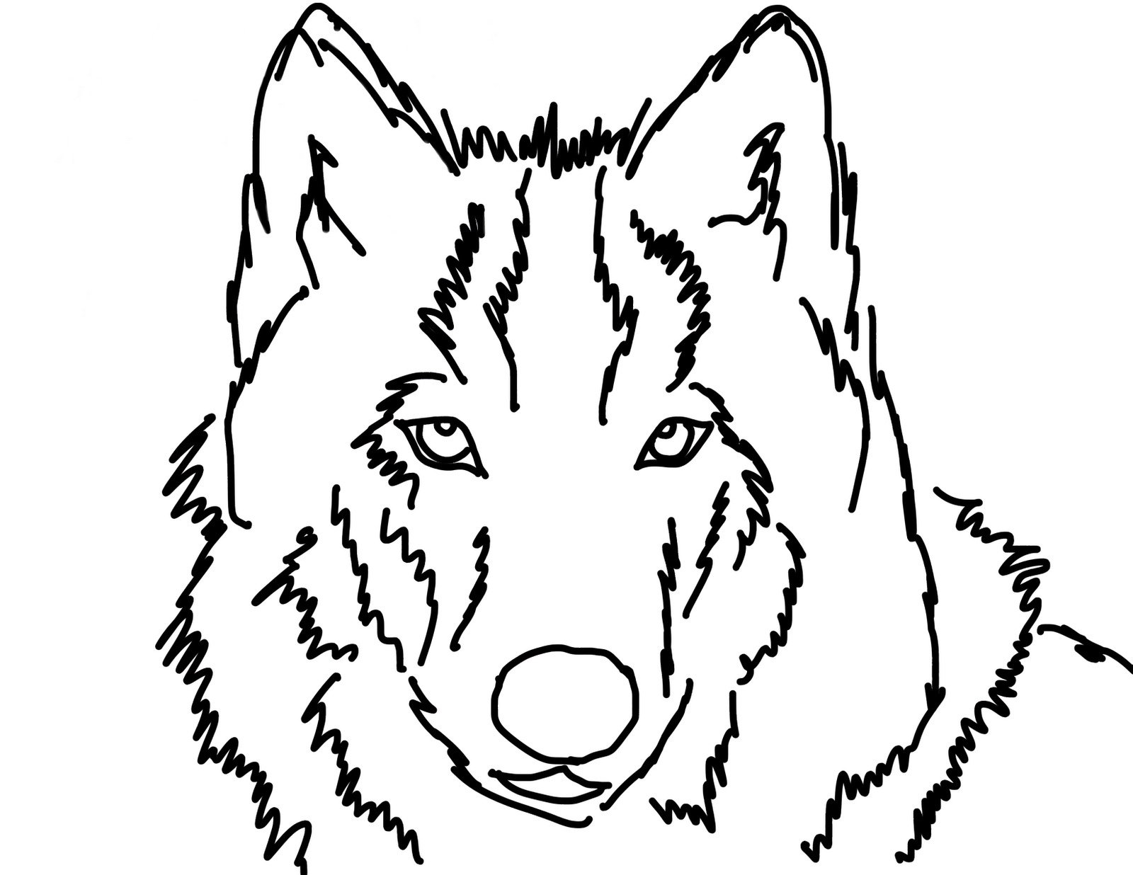 Line Drawing Wolf Face : Wolf head outline cliparts