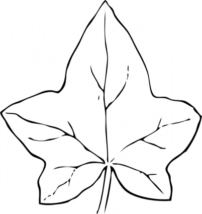 Ivy Leaf clip art - Download free Nature vectors