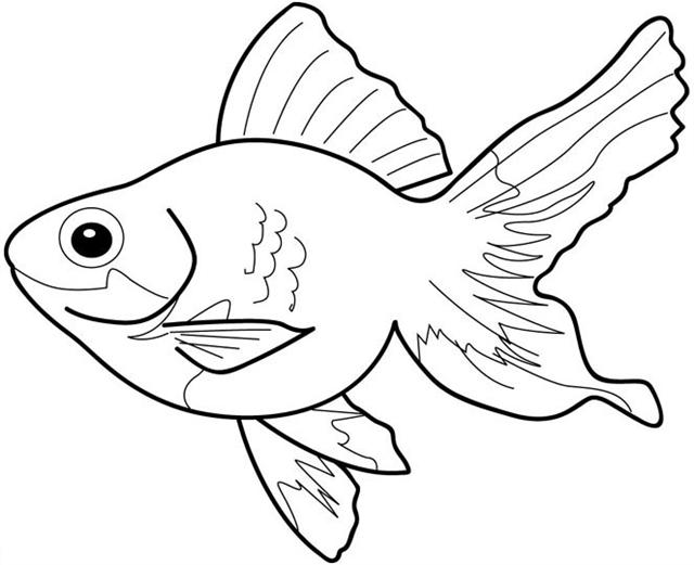 Fish Clipart To Color