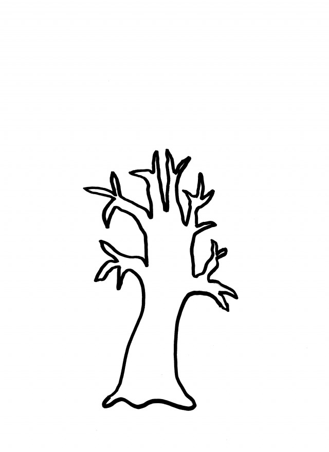 Fall Tree Outline ClipArt Best 112499 Family Tree Coloring Pages