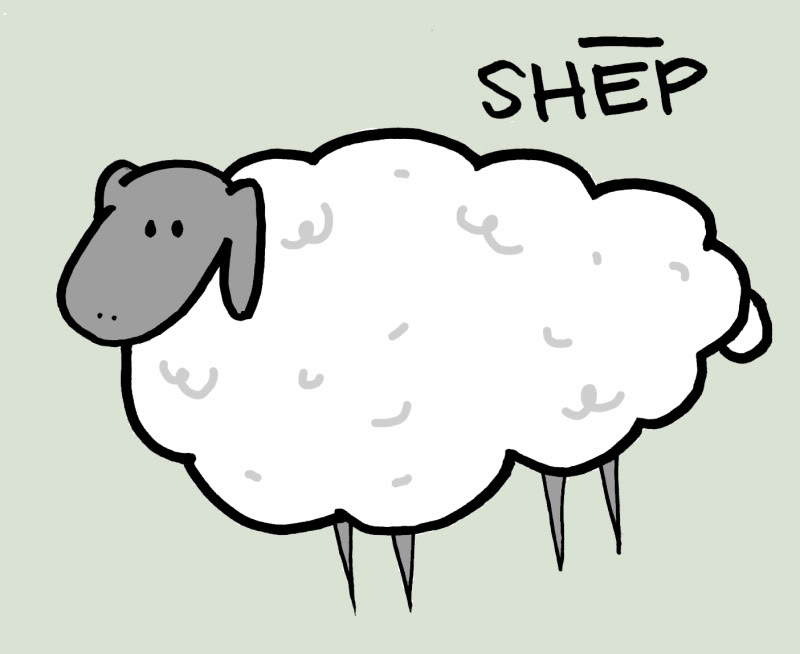 sheep | Viciously Sweet