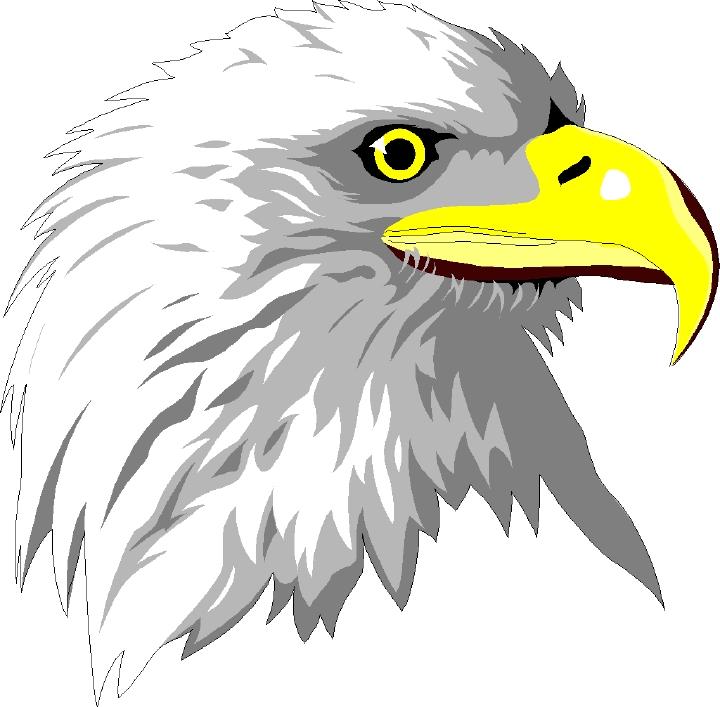free bald eagle clipart - photo #31
