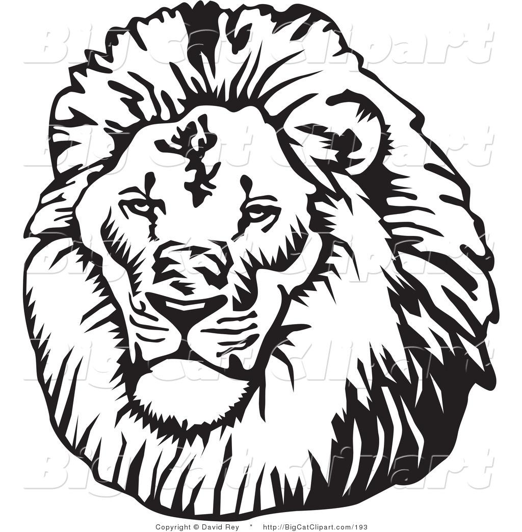 Lion Clip Art Picture - Cliparts.co