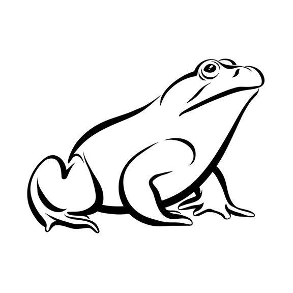 Line Drawing Frog : Frog line art cliparts