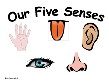 5 Senses - Cliparts.co
