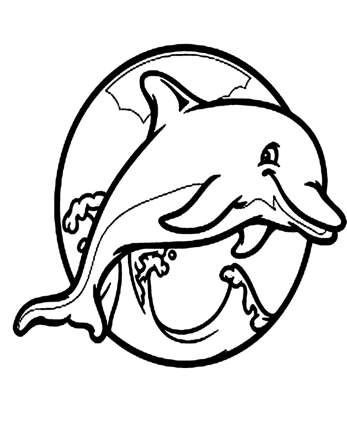 How To Draw A Baby Dolphin