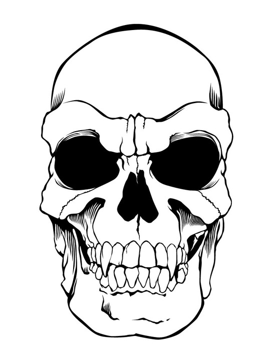 Skeleton Face Line Drawing : Skull drawings pictures cliparts