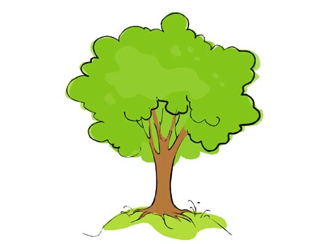 Cartoon Tree Drawing - ClipArt Best