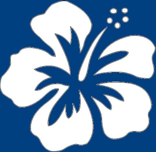 Hawaiian Flower Cartoon No 23fcb2e4fc2bd02eeafdb9463f5fb8