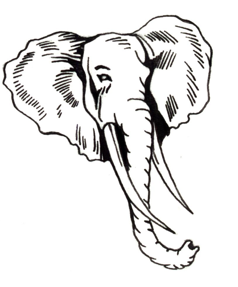 Line Drawing Elephant Face : Cartoon elephant face cliparts