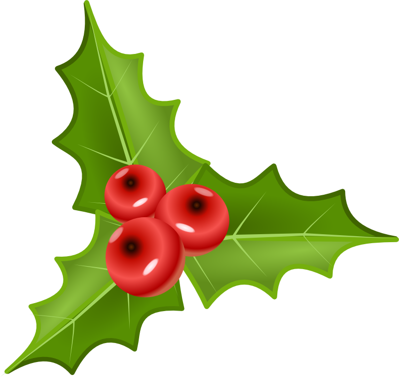 free xmas clipart holly - photo #20