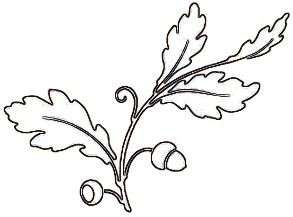 Leaf Clip Art Outline - Cliparts.co