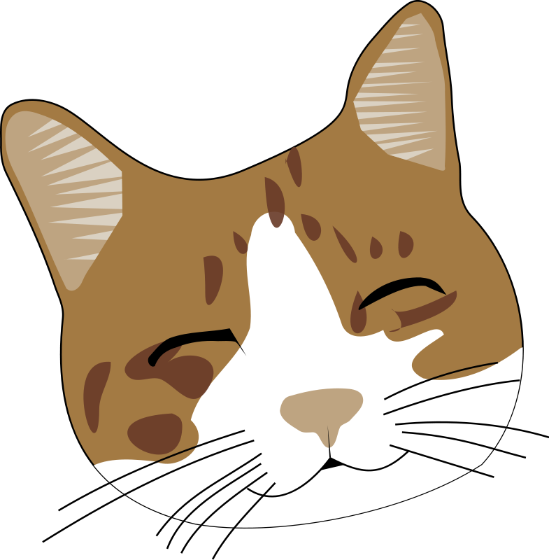 Free cliparts: Smiling cat Clipart