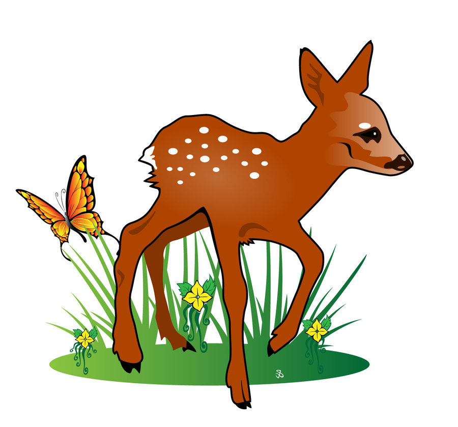 Fawn Illustration By Vectorportal On DeviantART - Cliparts.co
