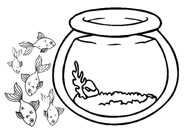 Personalized Crawfish Boil Water Bottle Wrap Stickers Gingham moreover Fish Bowl Outline further Clipart Oxygen moreover Nasa Space Rocket Drawings furthermore 569. on tank clipart