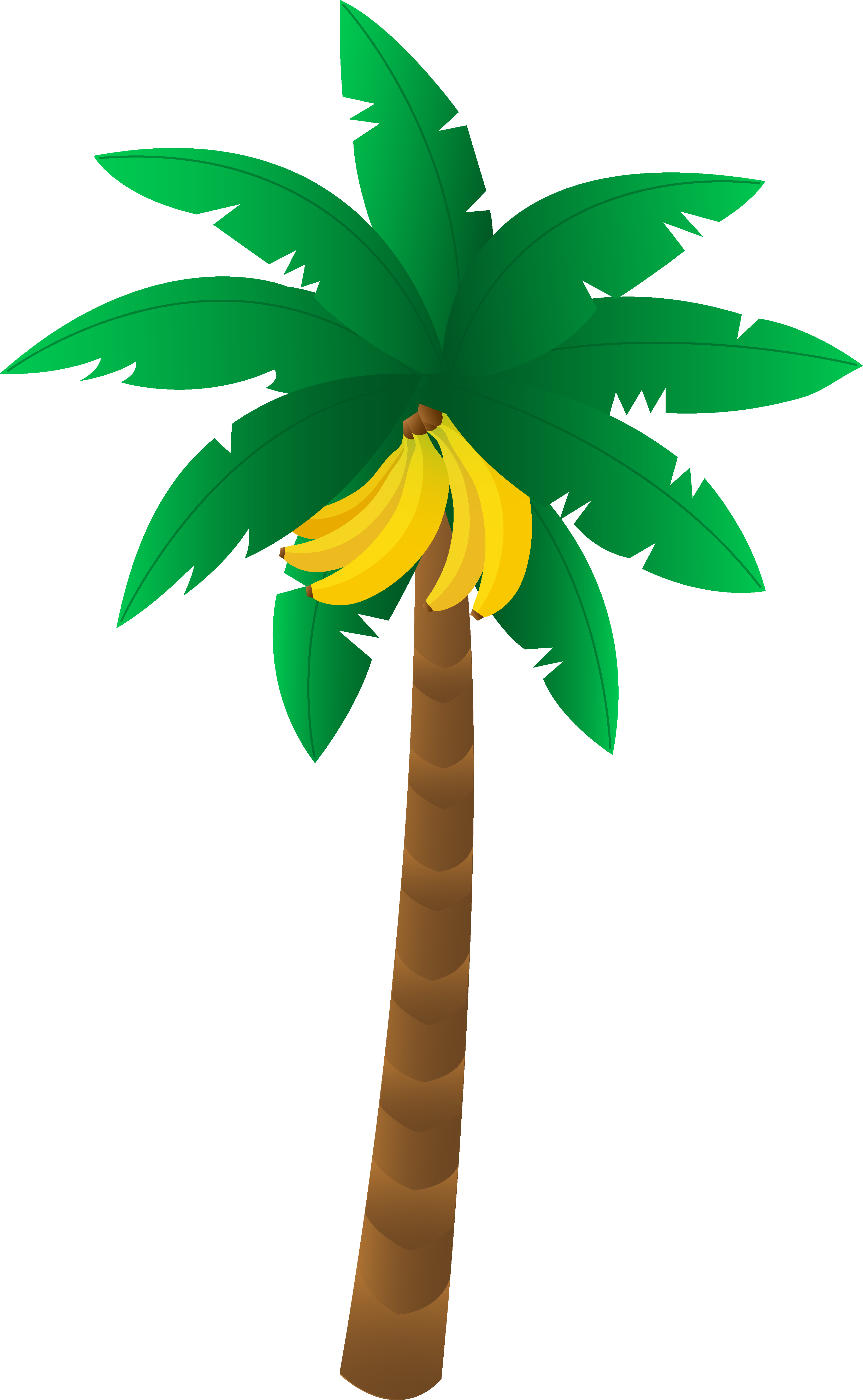 banana tree drawing png - photo #1