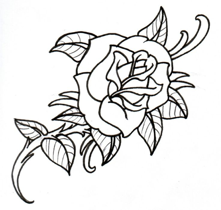 rose tattoos on Pinterest