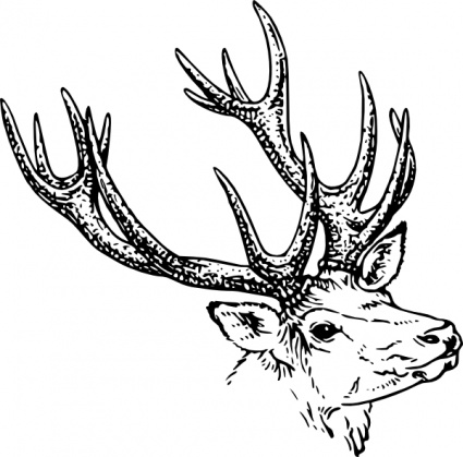 Tribal Deer Head Vector - Download 1,000 Vectors (Page 1)