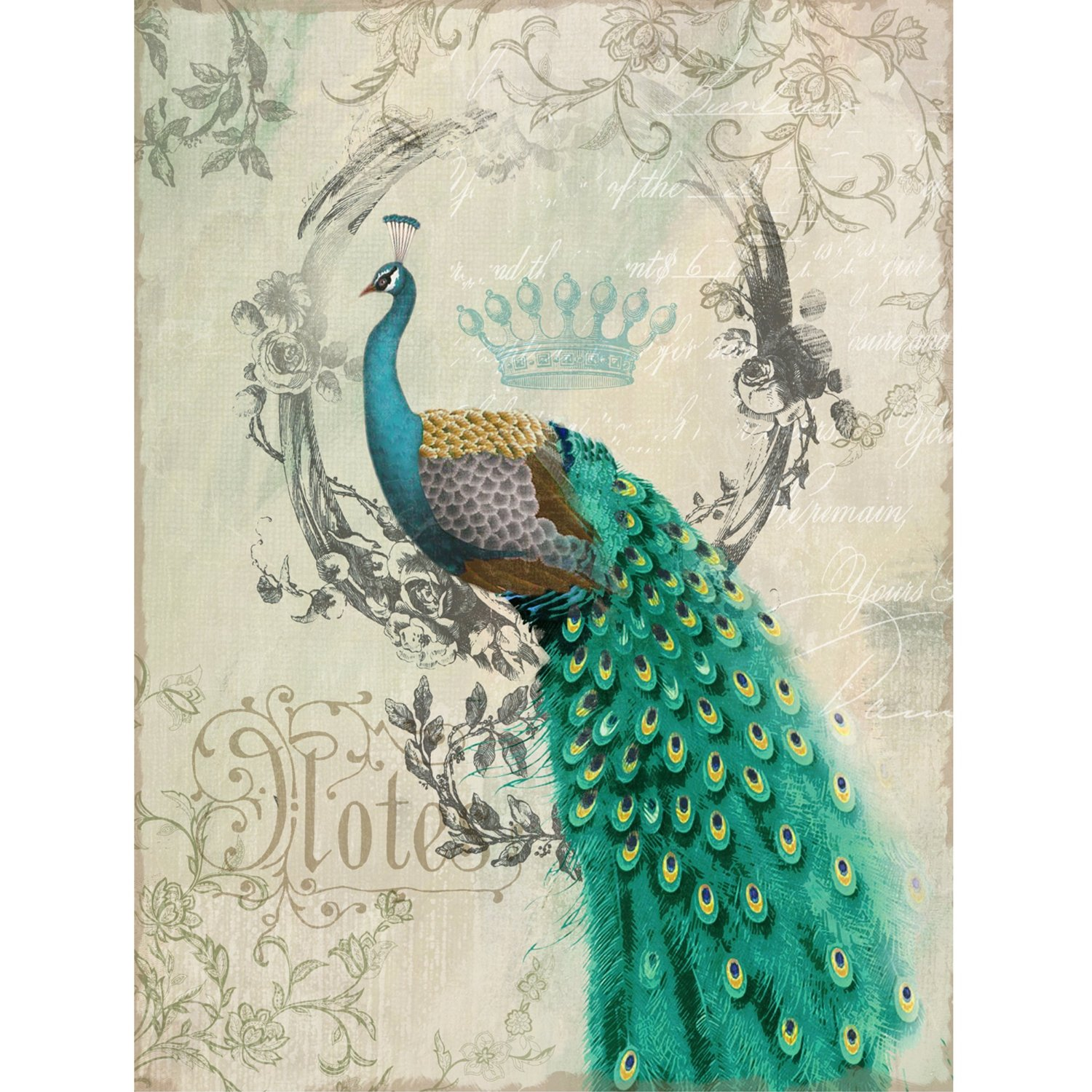Peacock images art for Peacock wall art