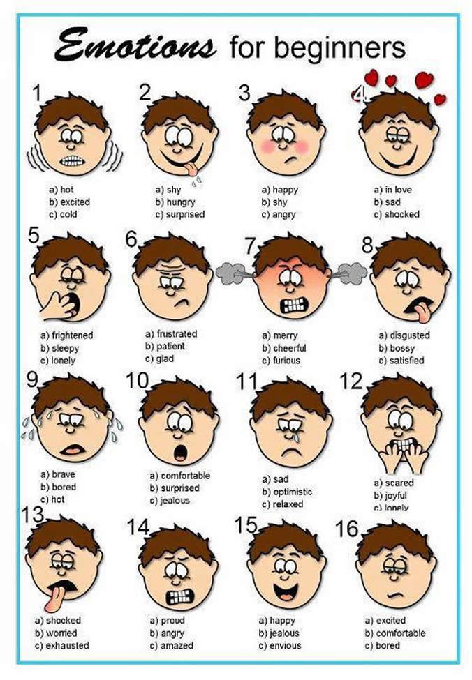 change and emotions in the things they Feeling faces: this is great for children that have a hard time finding the right word to describe their emotions--use with a feeling journal to help them learn what the feeling is and what the facial features might be in each situation.