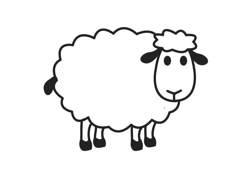 Lamb Cartoon Images