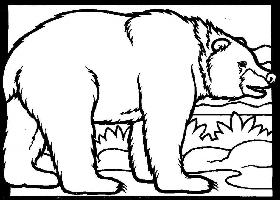 Black Bear Coloring Page