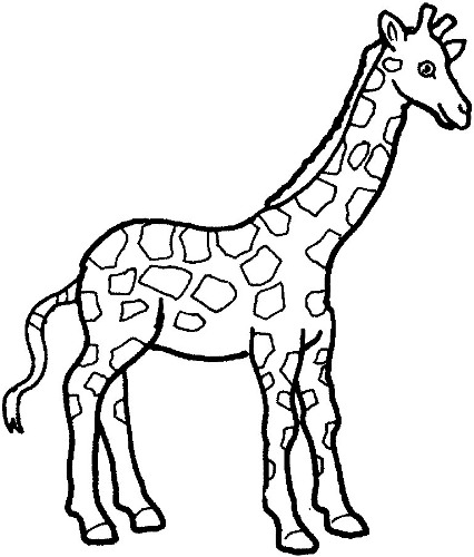 Download this Giraffe Clip Art | Clipart Panda - Free Clipart Images
