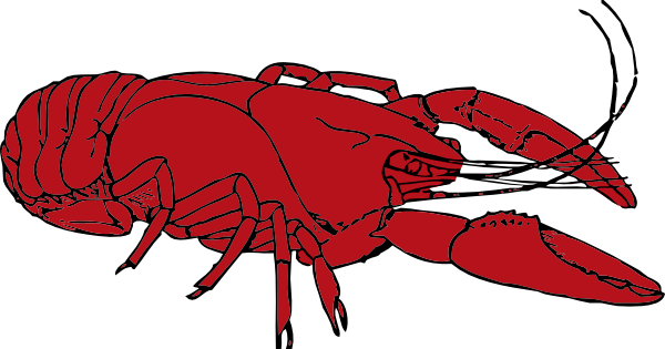 cajun clipart cliparts co crawfish clipart pictures crawfish clipart pictures