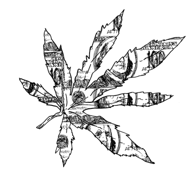 weed plant drawing clipartsco
