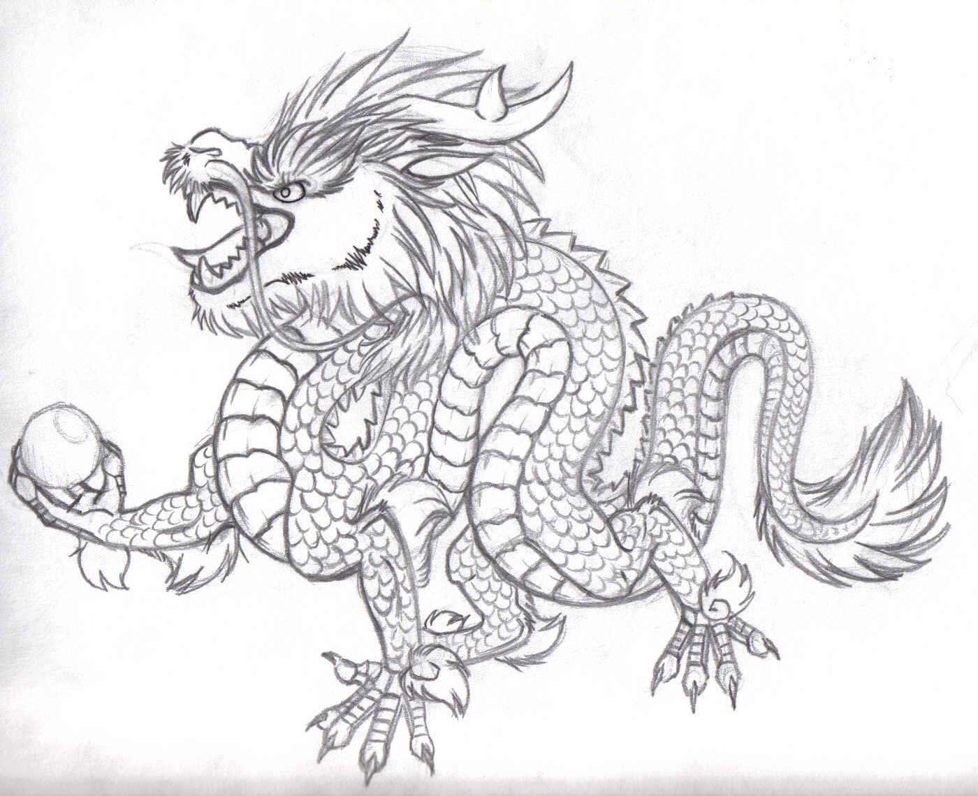 Drawing of a chinese dragon