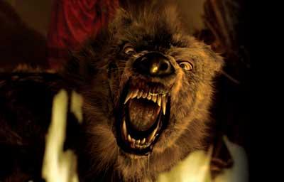big bad wolf company