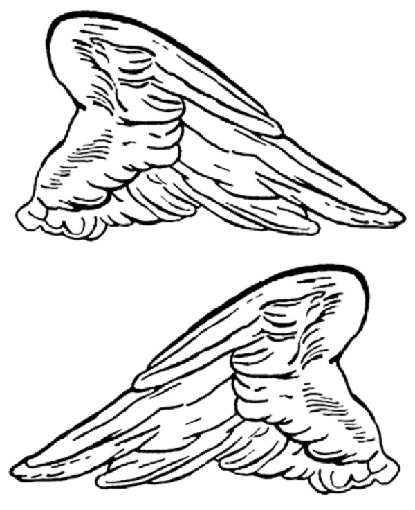 wings coloring pages - photo#26