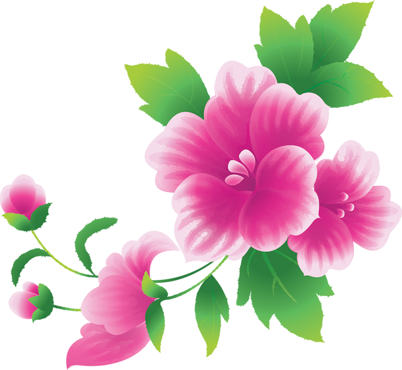 Free Images Flowers - Cliparts.co