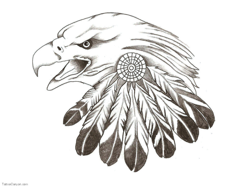 Eagle Feather Tattoo New Tattoos Picture #