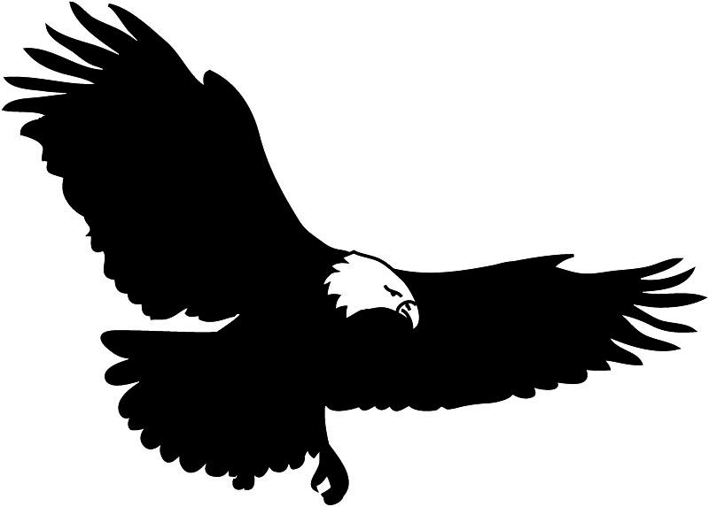 free bald eagle clipart - photo #20