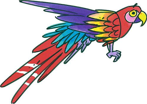 Parrot Cartoon Pictures Flying Parrot Cartoon Lol