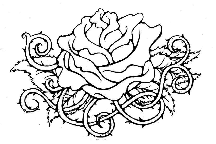 Line Art Of Rose : Line drawing rose cliparts