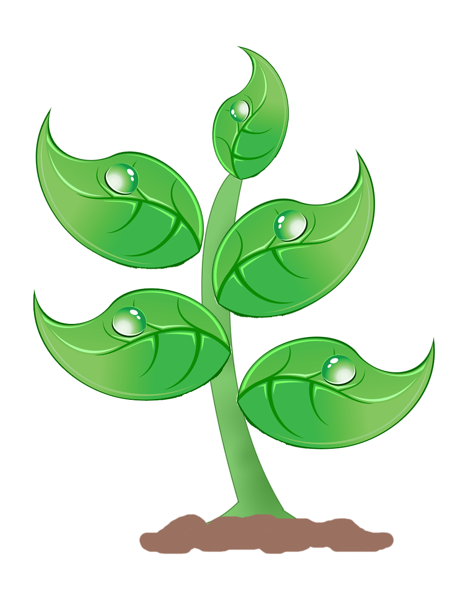 clipart of plants - photo #1
