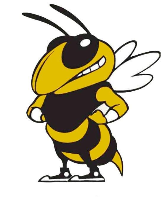 Yellow Jacket Mascot Clipart - Cliparts coYellow Jacket Mascot