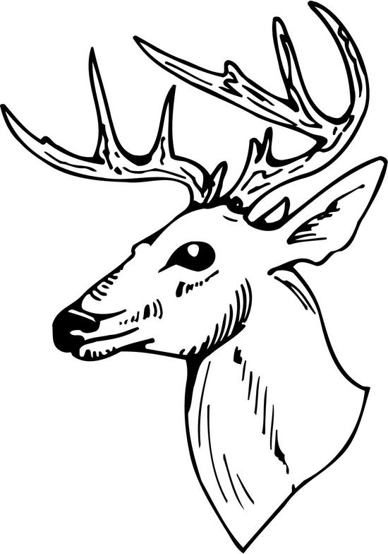Deer Head Clipart Black And White Deer Head Clipart Black And