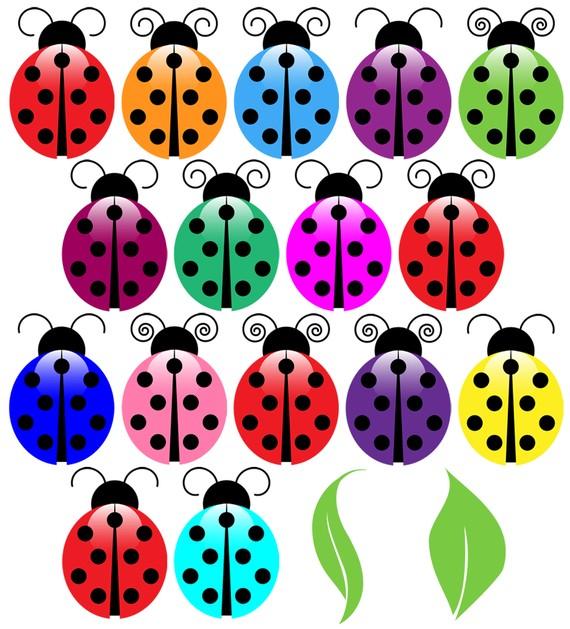 Ladybugs Clip Art Clipart Ladybug Clip Art Clipart by PinkPueblo