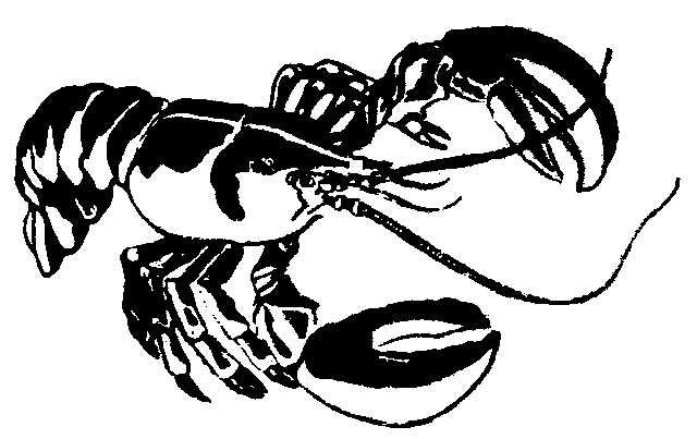 Lobster Clipart Cliparts Co