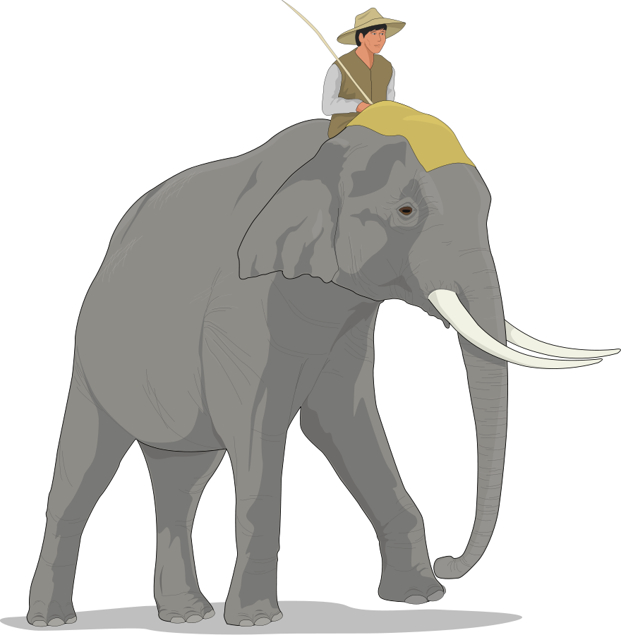 PHP elephant Clipart, vector clip art online, royalty free design ...