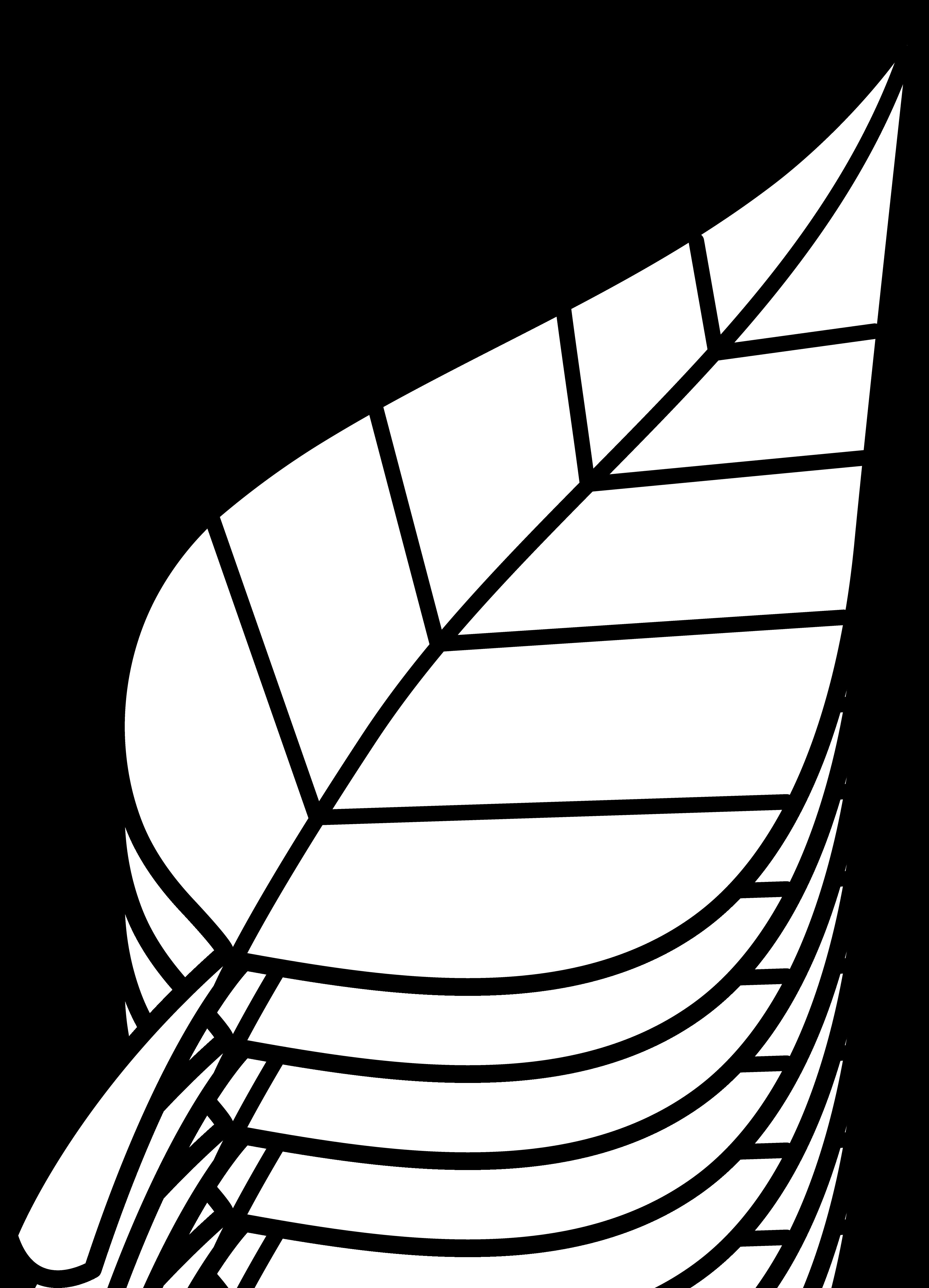 Leaf Images Clip Art