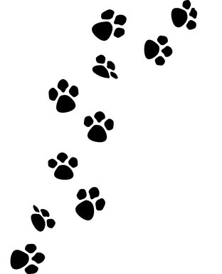 434315957786363669 together with 155387 Bear Shot Placement Rifle Hunters also Huella De Perro furthermore 223631937722749520 besides Put the animals in the mitten. on deer tracks