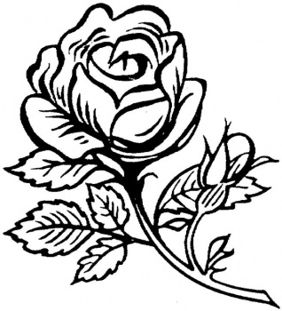 Coloring Pages: janbrett coloring pages Janbrett Coloring Pages ...
